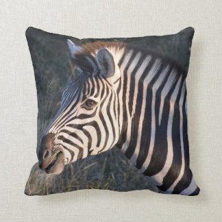 Zebra Africa Throw Pillow