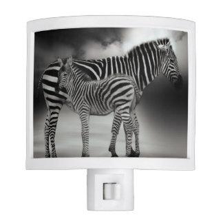 Zebra and foal night lite