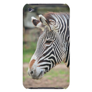 Zebra animal iPod touch cover
