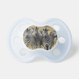 Zebra Animal Stripes Print Destiny Destiny'S Pacifier