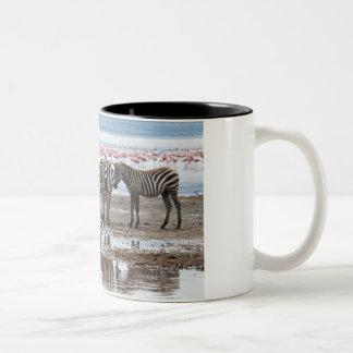 Zebra at Lake Nakuru Kenya Mug