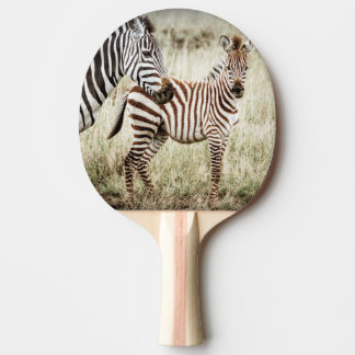 Zebra & Baby Ping Pong Paddle