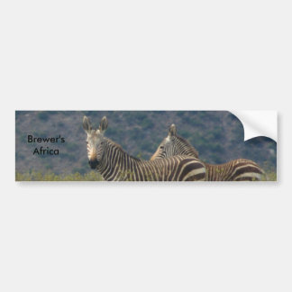 Zebra Bumper Sticker