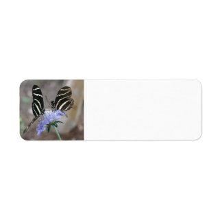 Zebra Butterflies Return Address Label