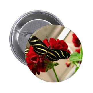 Zebra Butterfly 2 Inch Round Button
