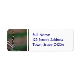 Zebra Butterfly Return Address Label