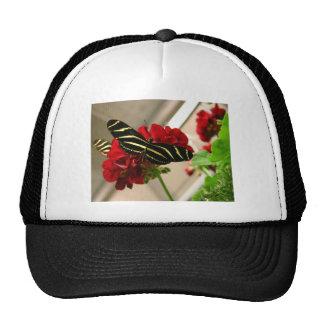 Zebra Butterfly Trucker Hat