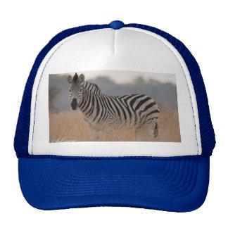 Zebra caps trucker hat