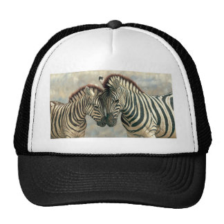 zebra-clip-art-3 mesh hats