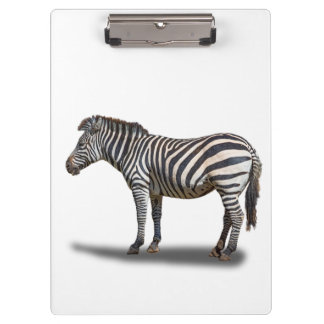 ZEBRA CLIPBOARDS