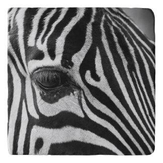 Zebra cloe-up trivet