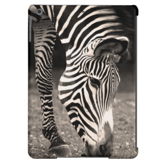 Zebra Eating Grass Cover For iPad Air