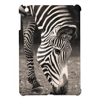 Zebra Eating Grass iPad Mini Covers
