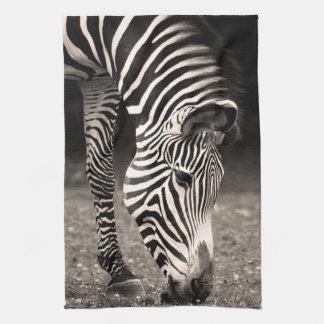 Zebra Eating Grass Kitchen Towel