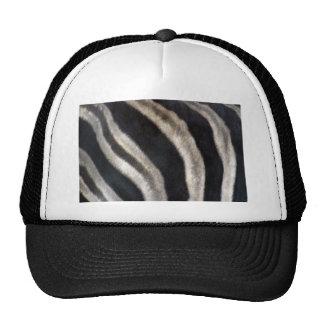 Zebra-ed Trucker Hats