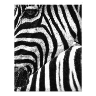 Zebra Face Customized Letterhead