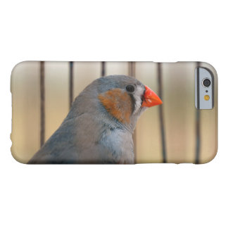 Zebra Finch Bird in Cage Barely There iPhone 6 Case