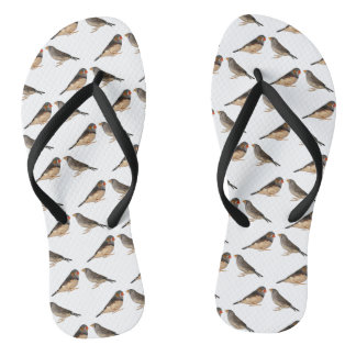 Zebra Finch Frenzy Flip Flops (choose colour)