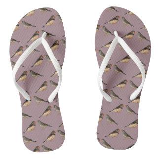 Zebra Finch Frenzy Flip Flops (Pink)