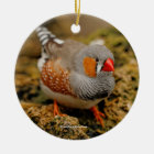 Zebra Finch on the Rocks Ceramic Ornament