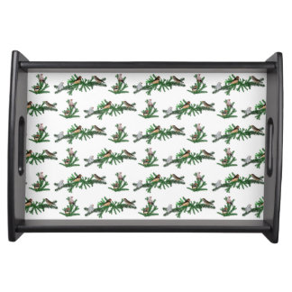 Zebra Finch Party Tray (choose colour)