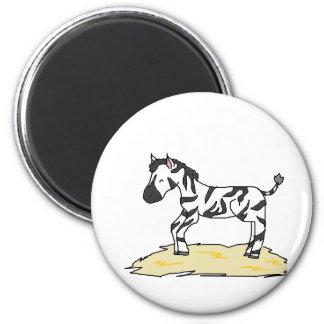 zebra foal 2 inch round magnet