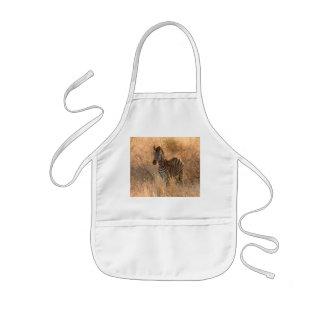 Zebra foal in morning light kids apron