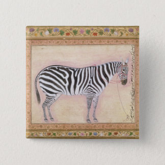Zebra, from the 'Minto Album', 1621 (gouache on pa 2 Inch Square Button
