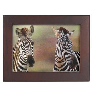 Zebra Habitat Keepsake Box