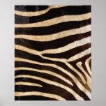 Zebra Hide 2 Poster