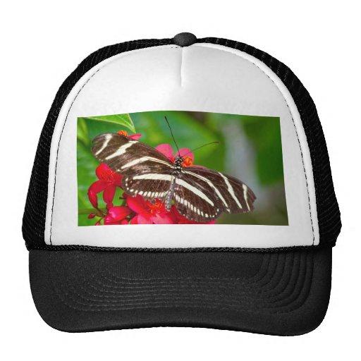 Zebra Longwing Butterfly Nature Photo Trucker Hat