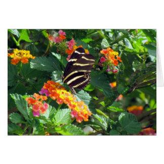 Zebra Longwing Butterfly on Lantana Card