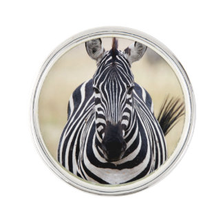 Zebra looking at you lapel pin