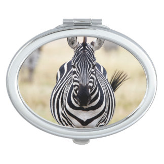 Zebra looking at you vanity mirror