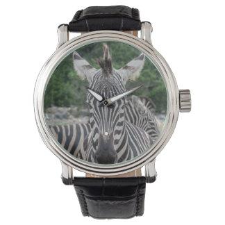 Zebra Mohawk Watch