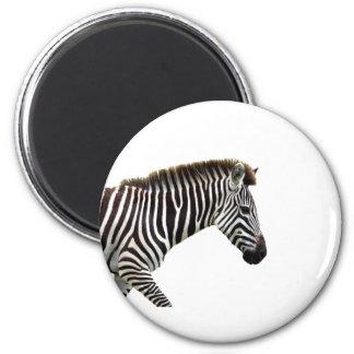 zebra-on-the-masai-mara 2 inch round magnet