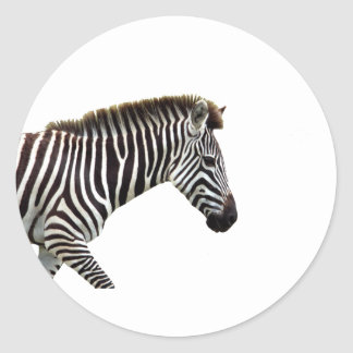 zebra-on-the-masai-mara classic round sticker