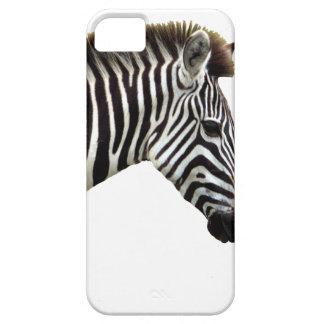 zebra-on-the-masai-mara iPhone 5 cases