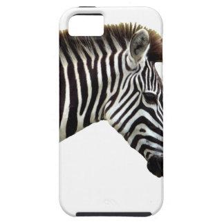 zebra-on-the-masai-mara iPhone 5 covers