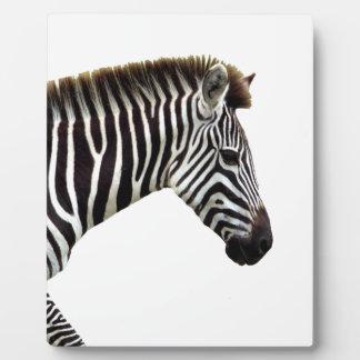 zebra-on-the-masai-mara plaque