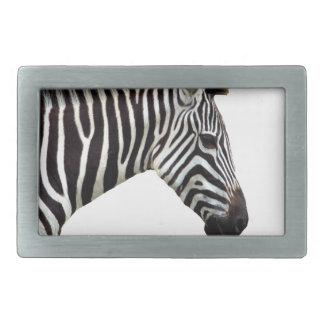 zebra-on-the-masai-mara rectangular belt buckles