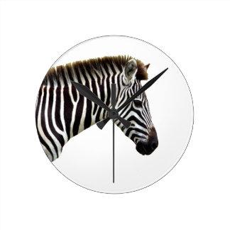 zebra-on-the-masai-mara round clock