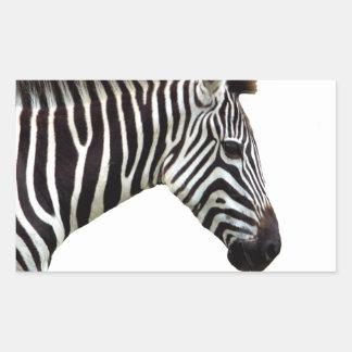 zebra-on-the-masai-mara sticker