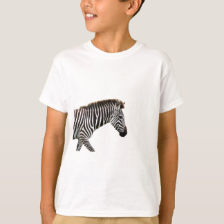 zebra-on-the-masai-mara T-Shirt