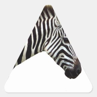 zebra-on-the-masai-mara triangle sticker