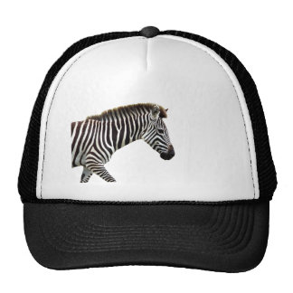 zebra-on-the-masai-mara trucker hat