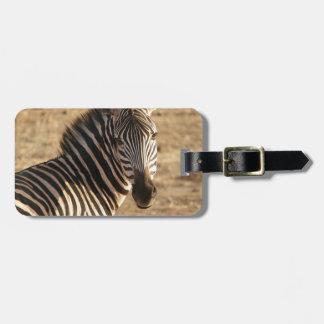 Zebra on the Savannah Luggage Tag