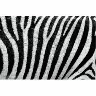 Zebra Cut Outs