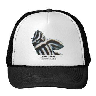 Zebra Placo Trucker Hat