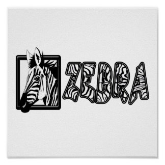 ZEBRA POP OUT POSTER